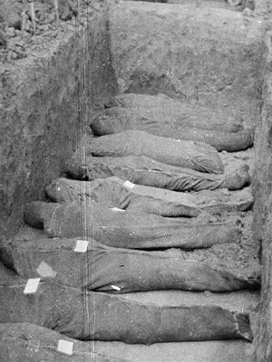 Nine Australian corpses in a mass grave, Warloy, France, August 1916