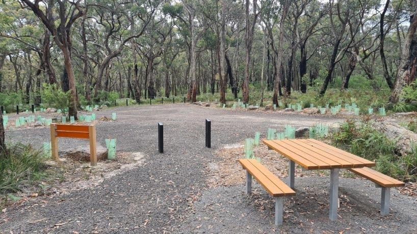 An orange picnic table inside a gravelled area which is bordered by tall green trees