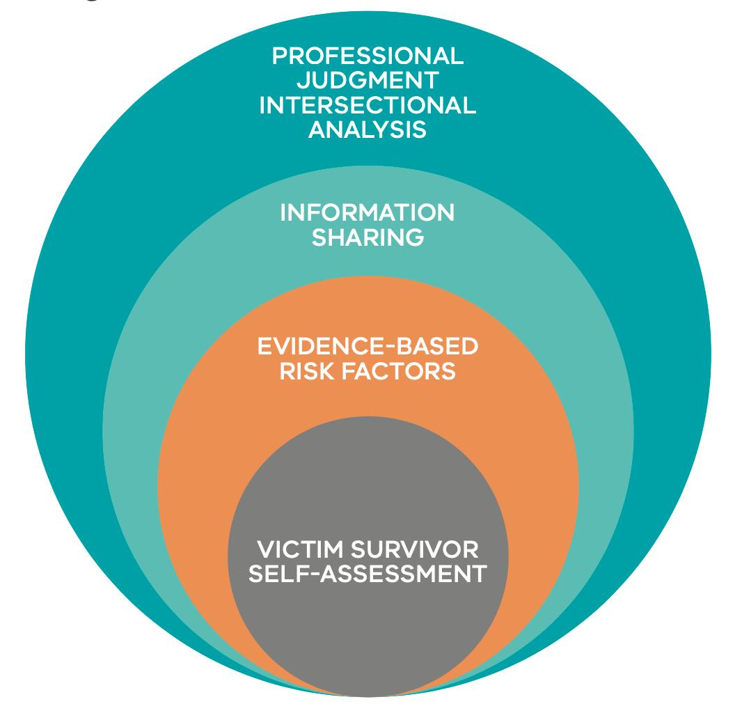 Figure 1: Model of Structured Professional Judgement
